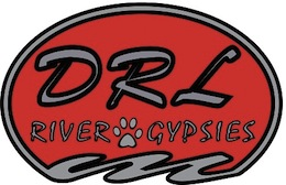 DRL-Logo-Larger.jpg